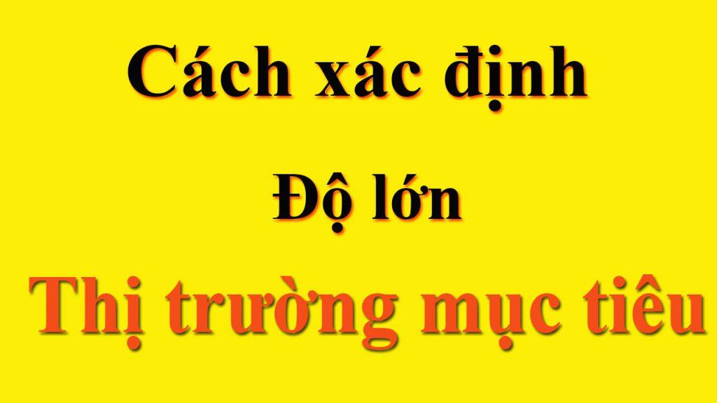 cach-xac-dinh-do-lon-thi-truong-muc-tieu